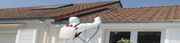 L'essentiel pour le nettoyage de votre maison